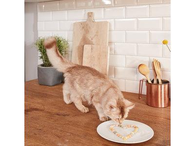 GimCat Kaas-Rollis doos - Aanvullend kattenvoer / kattensnack met echte kaas - 40gr, 50gr, 140gr, 200gr en 425gr