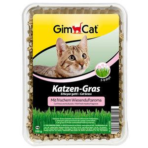 GimCat Kattengras met weiland-geur-aroma - Anti-haarbal kattengras