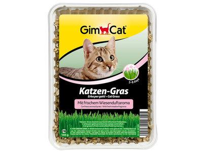 GimCat Kattengras met weiland-geur-aroma - Aanvullend kattenvoer / anti-haarbal kattengras - 150g