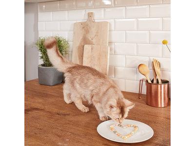 GimCat Mint Tips - Aanvullend kattenvoer / kattensnack met aromatische kattenkruid - 40g