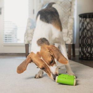 PetSafe Ribinator - Traktatie Hondenspeelgoed