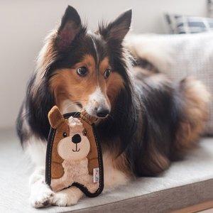 Invincibles Sterke Knuffel voor Kleine Honden