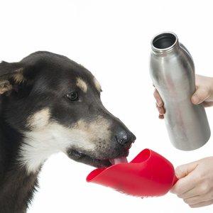 Drinkfles voor Honden van RVS