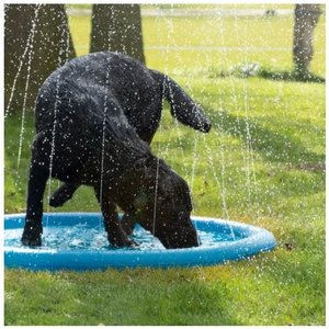 CoolPets Splash Pool Water Sprinkler - Verkoelende watersproeier voor honden