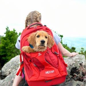 Hondenrugzak voor Kleine Honden