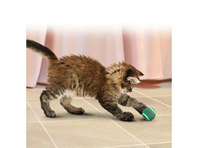 Kong tennisballen met belletje voor katten