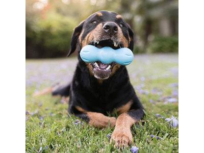 West Paw Rumpus - Extra sterk hondenspeeltje met Zogoflex - Voor écht sterke kauwers - Blijft drijven - Oranje / blauw / groen - Small / medium