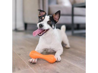 Super Sterk Kauwbot voor Hond - West Paw Hurley® met Zogoflex -  in Blauw, Groen of Oranje in XS/S/L