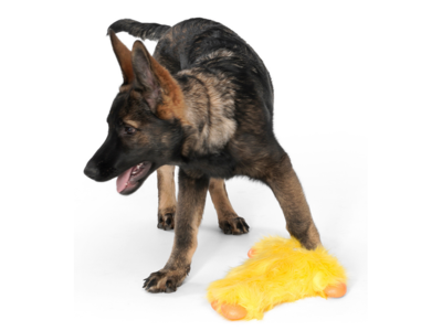 West Paw Rowdies™ Peet - Duurzaam Pluche Hondenspeelgoed - Voor (Middel)Grote Honden - Sterke Knuffel in Roze, Groen en Geel - Ideaal voor Trekspel