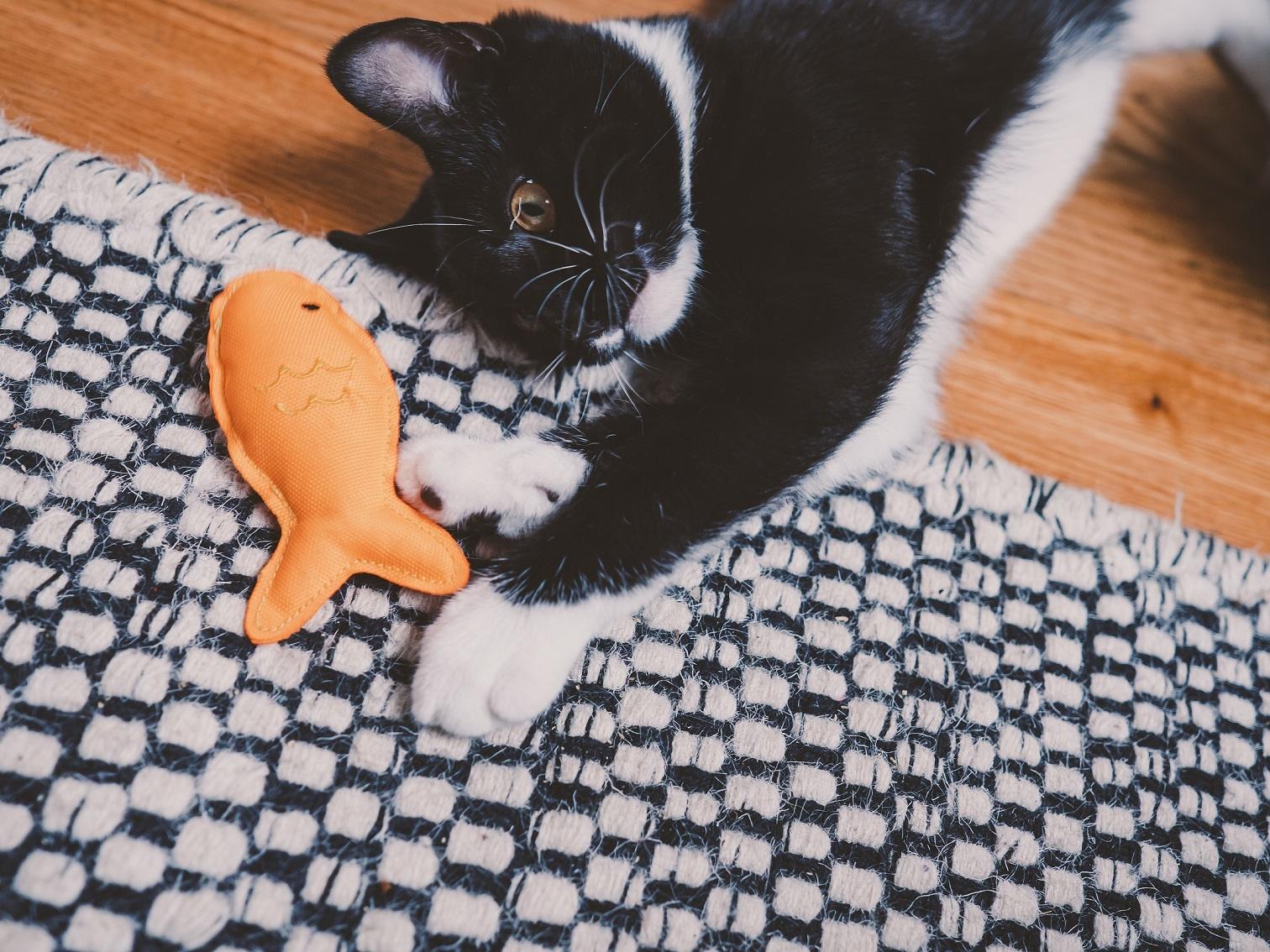 Beco kattenspeeltje met kattenkruid