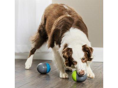 PetSafe Ricochet Electronic Dog Toys speelset voor honden