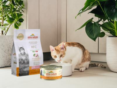 Almo Nature HFC Kittenpakket - Bevat HFC droogvoer Kitten 300 gram en12 blikjes HFC Kitten 70 gram