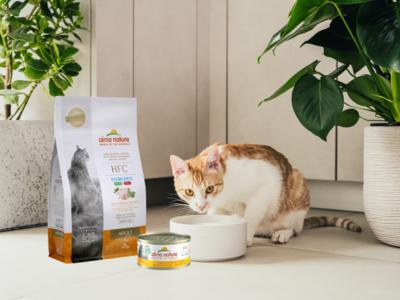 Almo Nature HFC Startpakket voor katten -  1 x Droogvoer Adult Sterilised Kip 300g en 12x  Natvoer kipfilet 70g
