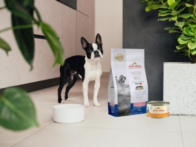 Almo Nature HFC Puppy pakket voor kleine hondenrassen - 1x HFC Droogvoor Puppy Zeebaars & Zeebrasem 1,2kg+ 24x HFC Natvoer Puppy kip 95g