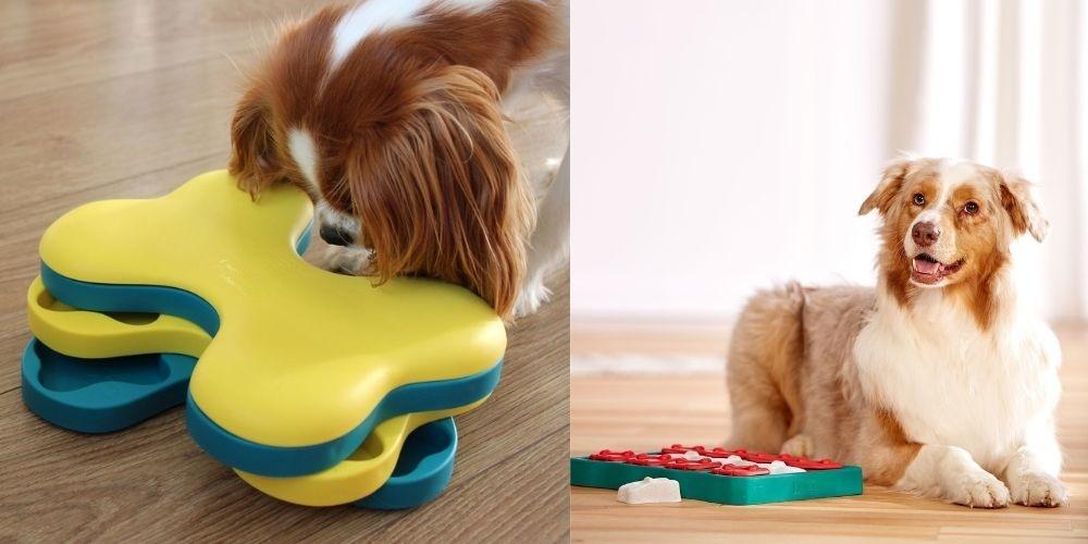 Dog Tornado & Dog Brick