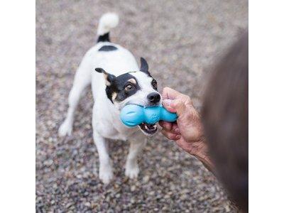 West Paw Rumpus Zogoflex - Extra sterk hondenspeeltje - Voor écht sterke kauwers - Blijft drijven - Oranje / blauw / groen - Small / medium