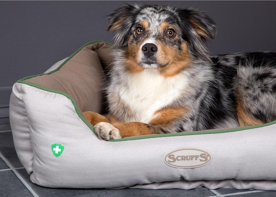 Insect-Shield Hondenmand tegen Vlooien, Luizen & Teken