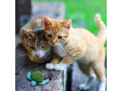 Kong pluche kattenspeelgoed voor catnip (kattenkruid)