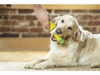 Busy Buddy Corn - Kauwspeelgoed voor honden - Voor een gezond gebit - Vulbaar met rawhide traktatie ringen - Verkrijgbaar in 2 maten