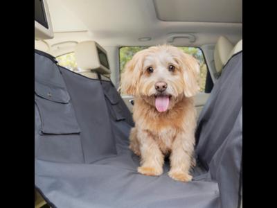 PetSafe Happy Ride™ Hammock Seat Cover - Beschermhoes voor achterbank in de stijl van een hangmat - Waterdicht - Kleur Grijs- 145x142cm