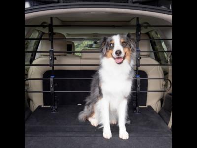 PetSafe Happy Ride™  Metal Dog Barrier - Veilig metalen frame voor de achterbak van de auto - Geen gereedschap nodig - Rammelvrij