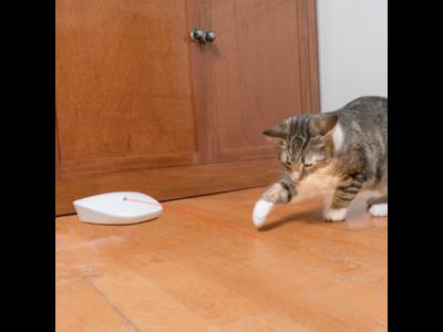 PetSafe FroliCat Laser Tail - Laserspeelgoed met veiligste laser - Schakelt Automatisch uit