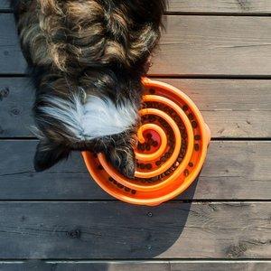 Anti-Schrok voerbak voor honden