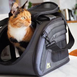 Opvouwbare design reistas voor hond of kat - geschikt als handbagage