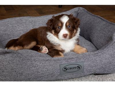 Stijlvolle en comfortabele hondenmand - Scruffs Manhattan - Verkrijgbaar in 4 kleuren van Small tot Extra Large