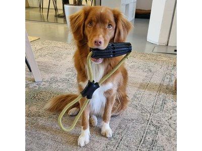 Kong Jaxx Infinity Tug robuust speeltouw voor sterke honden