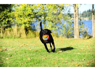 Chuckit Kick Fetch Drijvende Voetbal voor Honden