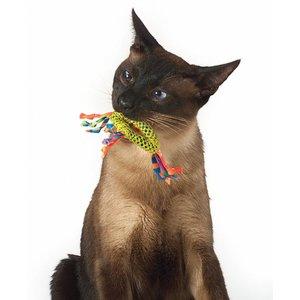 Gebitsreiniging met Kattenkruid