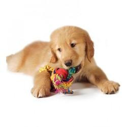 Puppy Speelgoed Bal met Touwtjes