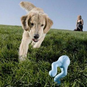 West Paw Tizzi Zogoflex - Speeltje voor actieve honden