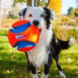 Kick Fetch Voetbal voor Honden