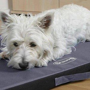 Scruffs Expedition Mat - Vuil- & waterafstotend outdoor matras voor honden
