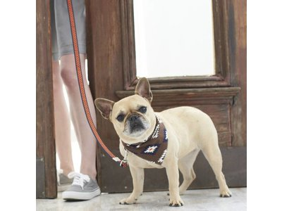 Territory Trendy Bandana voor Honden