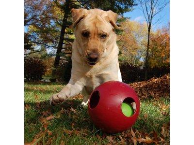 Jolly Teaser Speelbal voor Honden Bijtbestendig
