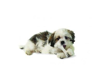 Duurzaam en Veilig Kauwbot voor Honden - Verwijderd Tandplak - Petstages - Verkrijgbaar in 4 maten: Extra Small (9,5cm); Small (12,7cm); Medium (17,8cm) en Large (20,3cm)