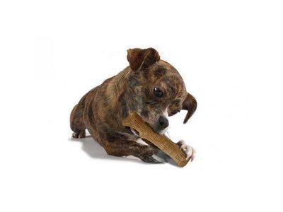 Petstages Houten Stok voor Honden voor op te Kauwen