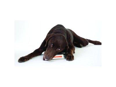 Petstages Stevig Kauwbot voor Honden met Natuurlijke Geur