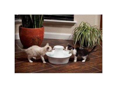 Drinkwell Waterfontein voor Katten van Keramiek 2 liter