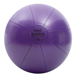 FITNESS MAD Studio Pro anti-burst 500Kg Swiss Gym Ball 75cm (2.1kg) with pump purple