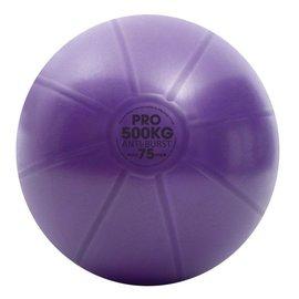 FITNESS MAD Studio Pro anti-burst 500Kg Swiss Gym Ball 75cm (2.1kg) with pump purple