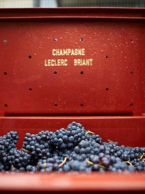 Leclerc Briant Champagne Premier Cru Extra Brut 2014
