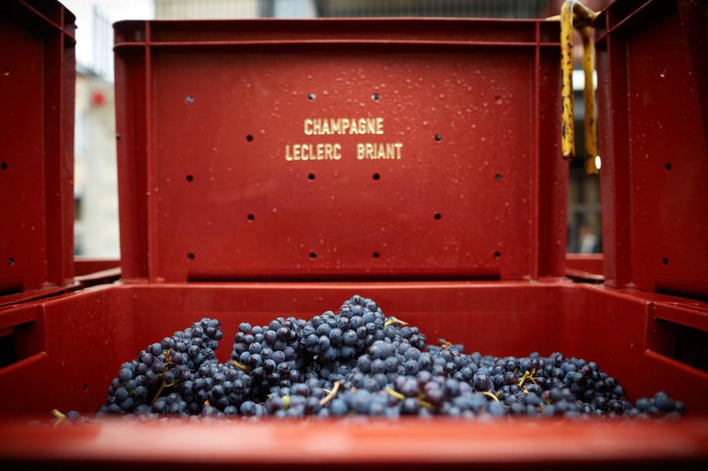 Leclerc Briant Champagne Premier Cru Extra Brut 2015