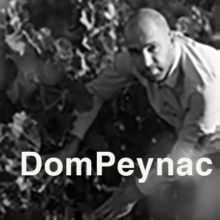 DomPeynac