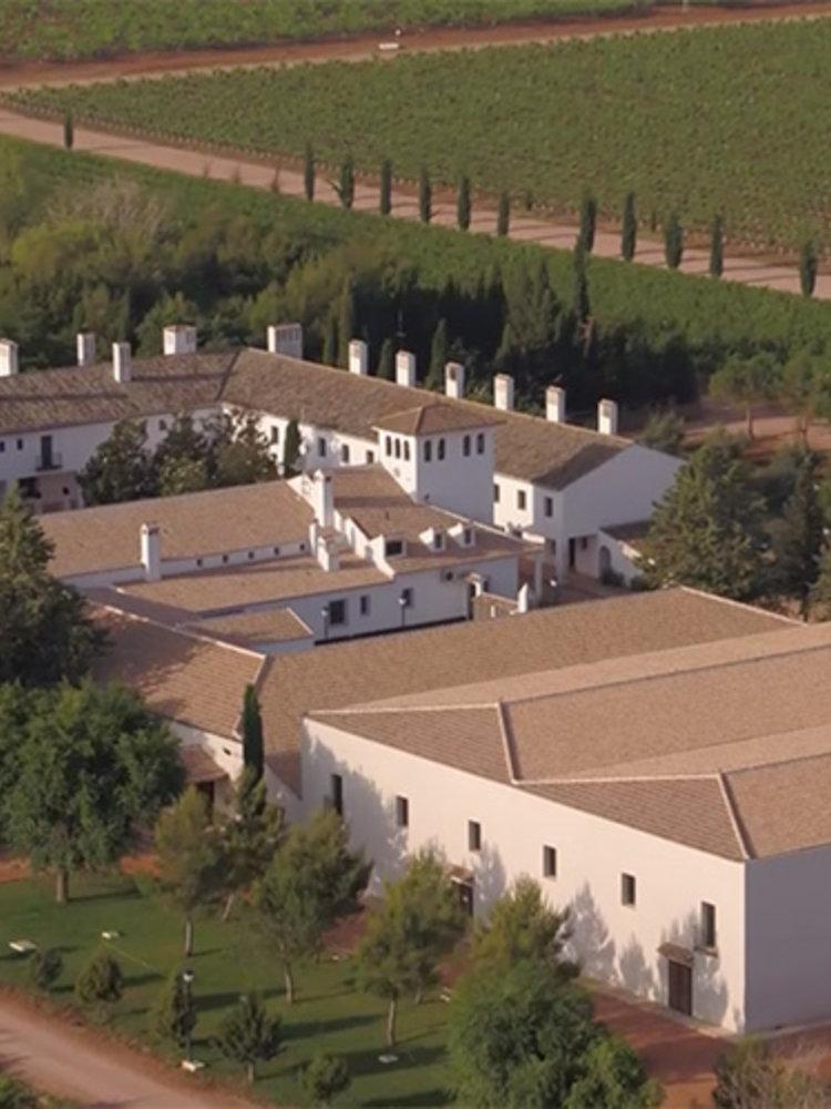 Familia Conesa Viña Consolación Chardonnay 2019