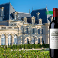 Château Fonplegade stijgt jaarlijks op de kwaliteitsladder van St Emilion