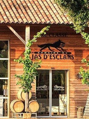 Jas d'Esclans Rosé Cru Classé 2019 - Jeroboam 3L